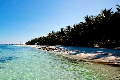 东南亚-跟团游