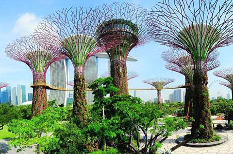 【典·博览】新加坡、马来西亚5天*经典抵玩<玩足5天,滨海湾花园,鱼尾狮公园,仙鹤芭蕾>