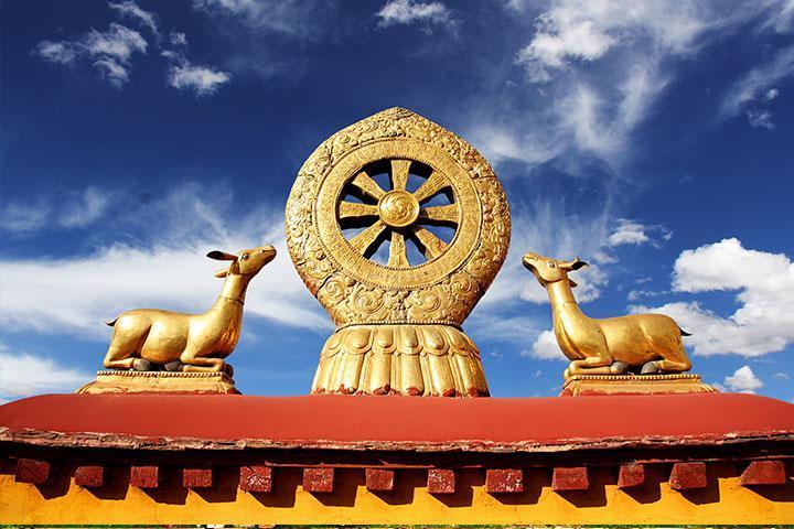 【典·深度】西藏、西宁、拉萨、林芝、三飞一卧8天*青林芝西*圣湖羊卓雍措*乐游<青海湖,巴松措,布达拉宫>
